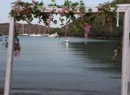 Cennet Koyunda Sürpriz Evlenme Teklifi Organizasyonu İzmir Organizasyon