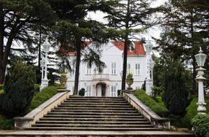 İstanbul Sarayda Evlenme Teklifi Organizasyonu İstanbul Evlilik Teklifi Organizasyonu