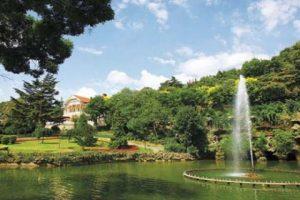 Koruda Evlilik Teklifi Organizasyon İstanbul